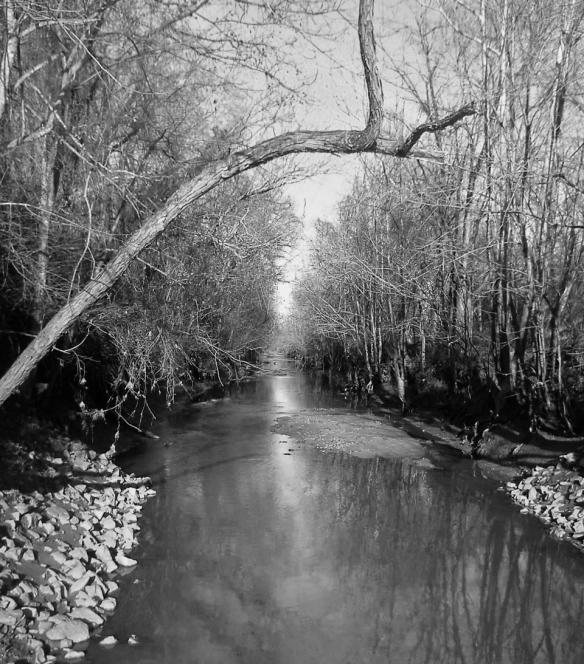 creek2blackand white
